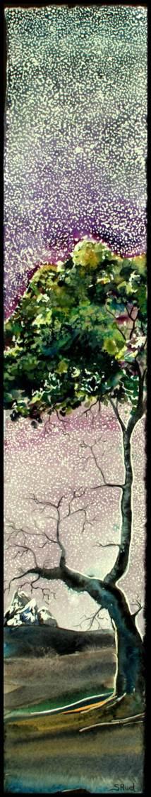 Encore sous les étoiles | Sophie Ruel - artiste