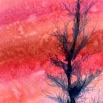 Haut en couleur | Sophie Ruel - artiste