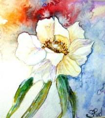   Sophie Ruel - artiste
