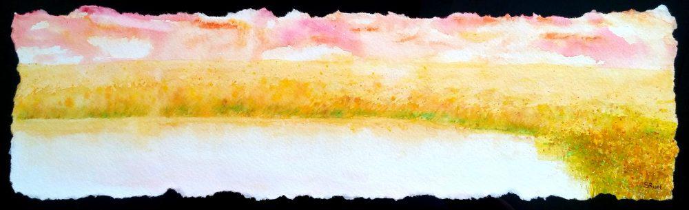 Plaine de lumière   Sophie Ruel - artiste