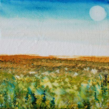 Delphinium du bleu du ciel   Sophie Ruel - artiste