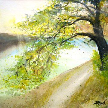 À l'eau, à l'horizon   Sophie Ruel - artiste