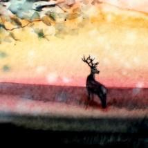 À l'arrêt du temps | Sophie Ruel - artiste
